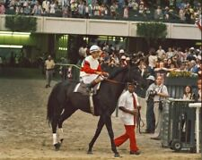 RUFFIAN 8X10 PHOTO HORSE RACING PICTURE JOCKEY RACE TIME
