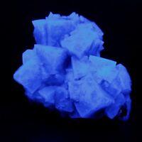 Minerali °°° FLUORITE FLUORESCENTE Cumberland - Regno Unito  (Code: MFL142D)