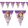 Sofia The First Flag Banner Bunting Children's Birthday Party Decoration Girls