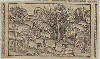 GRÜNINGER INKUNABEL Original Holzstich um 1510 Mittelalter Wein Storch Rinder