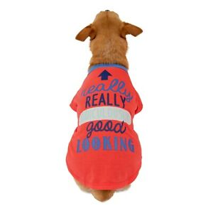 Vibrant Life Really Good Looking Dog T-Shirt, Red, X-Small