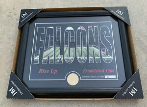NEW NFL Atlanta Falcons Highland Mint Silhouette Panoramic Bronze Coin Photo