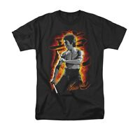 BRUCE LEE DRAGON FIRE Licensed Adult Men's Graphic Tee Shirt SM-6XL
