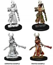 Wzk73701 Dungeons & Dragons Nolzur`s Unpainted Miniatures W9 Female Human Druid
