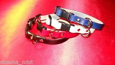 "#F5B Personalize Leather Ferret Collar with Breakaway Buckle 6"" To 9"" !"