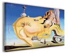 Quadri famosi Salvador Dali' vol XIV Stampa su tela arredo moderno arte design