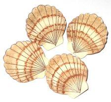 DECORATIVE TROPICAL BEACH SEA SHELL PUSH PINS HAND PAINTED ~ BULLETIN CORK BOARD