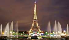 Eiffel Tower fountains Paris France cityscape image picture print art photo 270