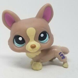 Littlest Pet Shop Retired Corgi Puppy Dog #1158 Tan/cream, Green/blue Eyes