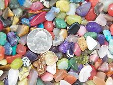 2000 Carat Lots of Size #2 Tumbled Polished Gemstones (~1000 GEMSTONES)