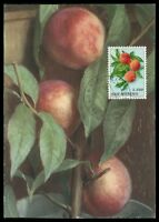 SAN MARINO MK 1973 FLORA OBST PFIRSICH FRUIT CARTE MAXIMUM CARD MC CM am50