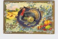 ANTIQUE POSTCARD THANKSGIVING TURKEY GREETINGS BREAKING THROUGH FIELD BACKGROUND