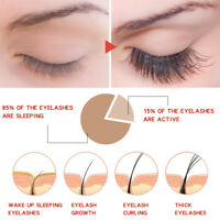 Eyelashes Longer Fuller Thicker Natural Serum Eyelash Growth Enhancer Treatment