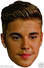JUSTIN BIEBER Purpose Album Promo shot Big Head - Window Cling Decal Sticker NEW
