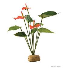 Exo Terra Terrarien-Pflanze Flamingoblume, UVP 12,89 EUR, NEU