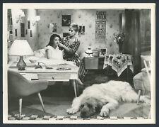 The Bashful Elephant 62 Childstar Molly Mack Kai Fischer Irish Wolfhound Bedroom