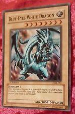 Yu-Gi-Oh! Blue-Eyes White Dragon Card 1st Edition SKE-001 VERY RARE