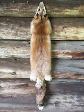 CHERRY RANCH RED FOX Fur Pelt Skin Taxidermy Tanned Log Cabin Rustic Decor