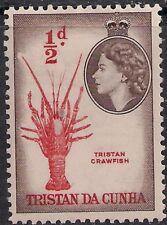 Tristan Da Cunha 1954 QE2 1/2d Tristan Crawfish MM SG 14 ( H1366 )