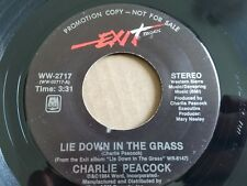 """CHARLIE PEACOCK - Lie Down in the Grass 1984 SYNTH POP ROCK Promo 7"""""""