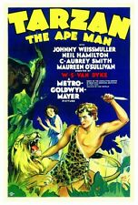 TARZAN THE APE MAN Movie POSTER 27x40 Johnny Weissmuller Neil Hamilton Maureen
