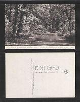 1940s SCENIC DRIVE EAST MAIN CAMP COLLEGE CAMP WISCONSIN ON LAKE GENEVA POSTCARD