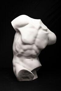 Erotic Sculpture of Apollo's torso statue, Male Torso, Classical Sculpture. Art.