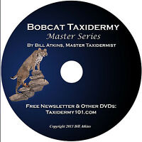 Learn Bobcat Taxidermy DVD; Training Video for Beginners; NEW