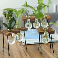 Hydroponic Plant Vases Glass Vase Vintage Bonsai Flower Pot Wooden Home Decor um