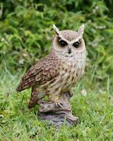 LONG EARED OWL ON STUMP Small Life Like Figurine Statue Home / Garden New