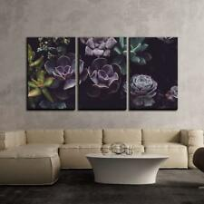 """Wall26 - Groups of Succulent Plant - Canvas Art Wall Decor - 24""""x36""""x3 Panels"""