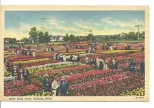 Holland Michigan Nelis Tulip Farm Post Card Vintage 4 cent stamp