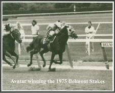 "1975 - AVATAR winning the Belmont Stakes - 10"" x 8"""