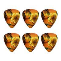 Beach Sunset Hibiscus Flower Hawaiian Novelty Guitar Picks Medium - Set of 6