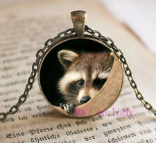 Animal cute raccoon Cabochon Glass Necklace charm Bronze pendants