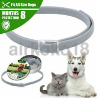 Dewel Flea And Tick Collar Anti-Insect Pets Dogs 8 Month Protection Adjustable