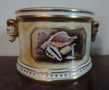Minoprio Derby Porcelain Mantle Vase Flight Barr Worcester Styl Shells Bough Pot
