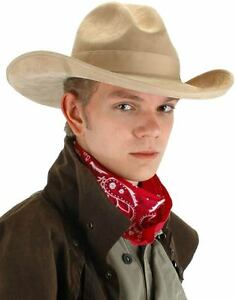 """Cowboy Hat Beige Faux Suede High Crown Pinched Front """"Gambler"""" Costume Hat"""