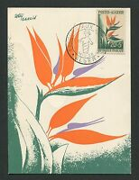 ALGERIE MK 1958 FLORA STRELIZIE MAXIMUMKARTE CARTE MAXIMUM CARD MC CM d4181