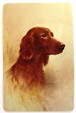VINTAGE SWAP CARD. IRISH RED SETTER DOG PORTRAIT. WHITMAN. MINT. ARTIST PAINTING