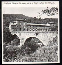 1981  --  GARD  ANCIENNE FILATURE DU MAZEL  HAUTE VALLEE DE L HERAULT   3N900