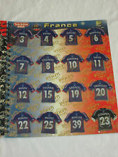 EQUIPE DE FRANCE    Equipe complete 16 Magnets  JUST FOOT 2008  Panini