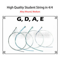 Student Violin Alloy Strings (Set) in 4/4 Full Size