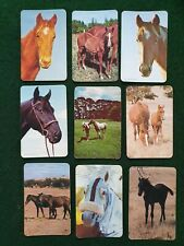 Swap Cards Blank back - 9 Horses - Valentine publishing