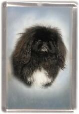 Pekingese Fridge Magnet Design No 6 by Starprint
