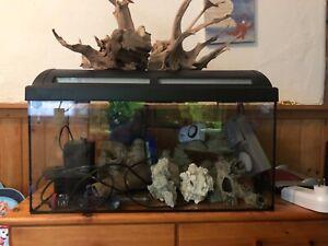 Gebrauchtes 60 l Aquarium mit kompletten Zubehör und Dekorationsgegenstände.