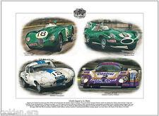 CLASSIC JAGUAR at LE MANS - Fine Art Print - C-Type D-Type E-Type & XJR-9LM Cars
