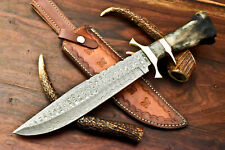 Rare!!! Custom Handmade Damascus Steel Blade Hunting Bowie Knife | Camel Bone