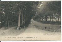 CPA 77 - MONTEREAU - les Noues - Avenue d'Hauël