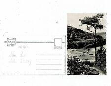 DEVON POST CARD REAL PHOTO MILLBAY SALCOMBE L 1738